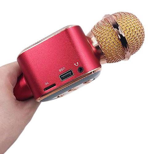 Microphone karaoke kèm loa WS-1818