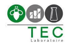 Certificado TEC de la Almohada Velfont antiacaros
