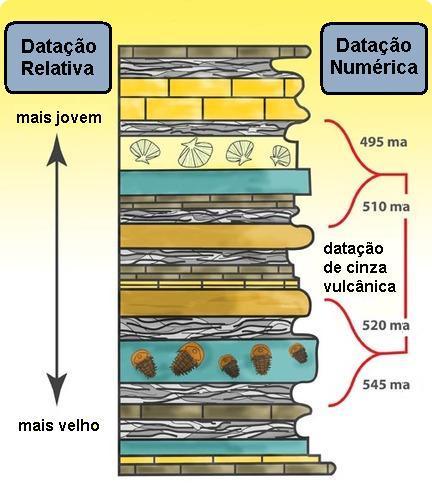 datacoes 1-2.JPG