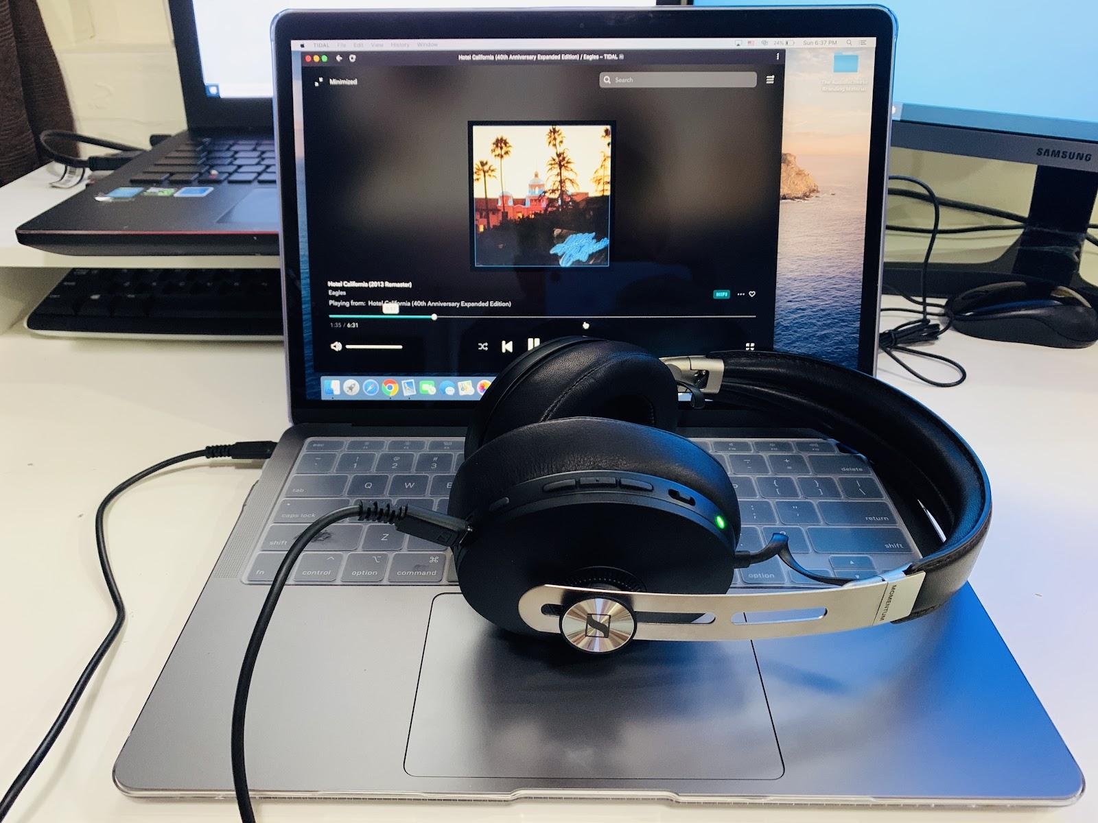 Connected Sennheiser MOMENTUM Wireless to my MacBook Air via USB Type-C