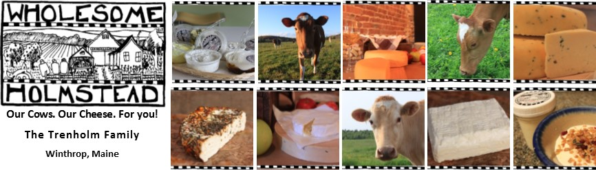 Wholesome Holmstead Curd Herd--Our Cows. Our Cheese. For You!