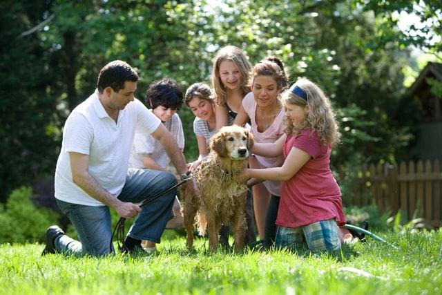 A family sitting in the grass with a dog  Description automatically generated with low confidence