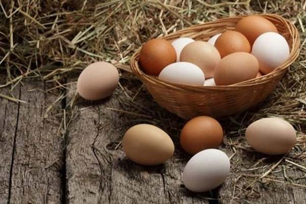 Nằm mơ thấy trứng gà