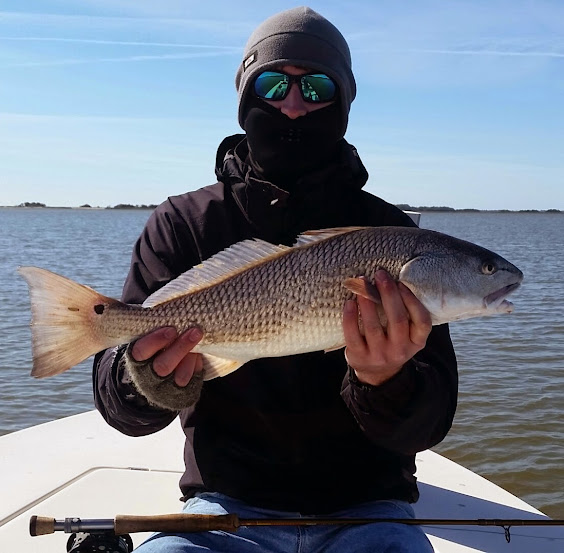 Fly caught red fish fly fishing golden isles