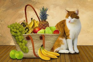 Why Do Cats Like Apples