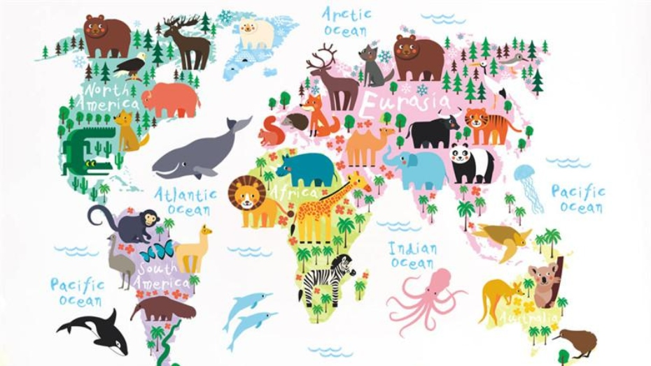 educational wall decals continents
