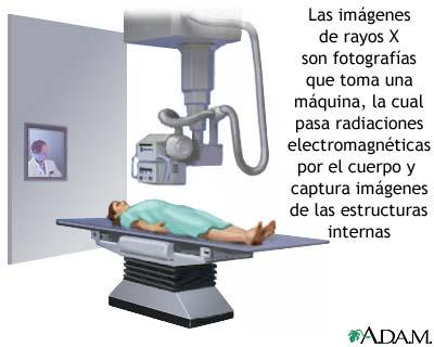 Vc.anatomía: AVANCES TECNOLÓGICOS DE LA ANATOMÍA.