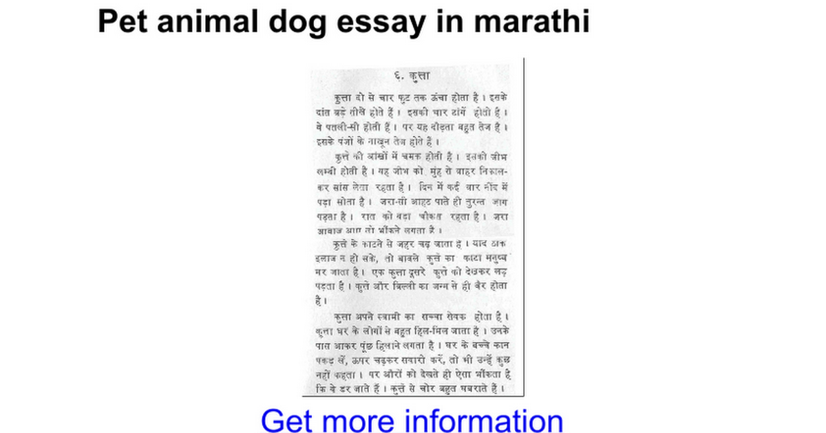 short essay on my favourite pet dog Which animals do you think make the best pets  my favourite pet is a guinea  pig  hi my favorite pet is a dog is beautiful she name is burble.