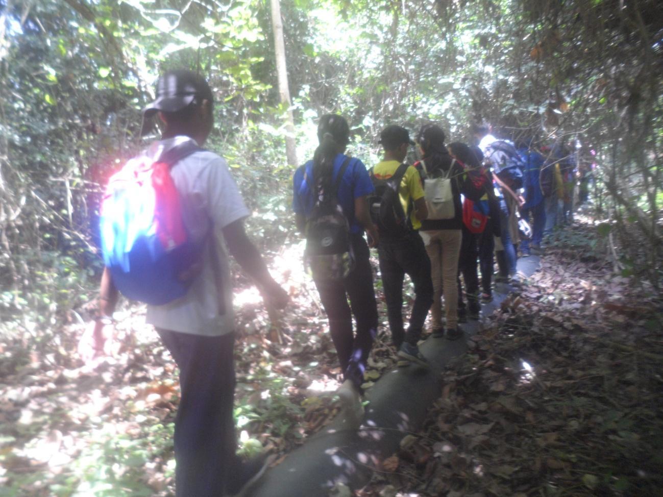 C:UsersInfanteDesktopdia de los bosques 21-03-2013SAM_3434.JPG