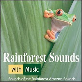 Rainforest Sounds With Music: Sounds of the Rainforest Amazon Sounds
