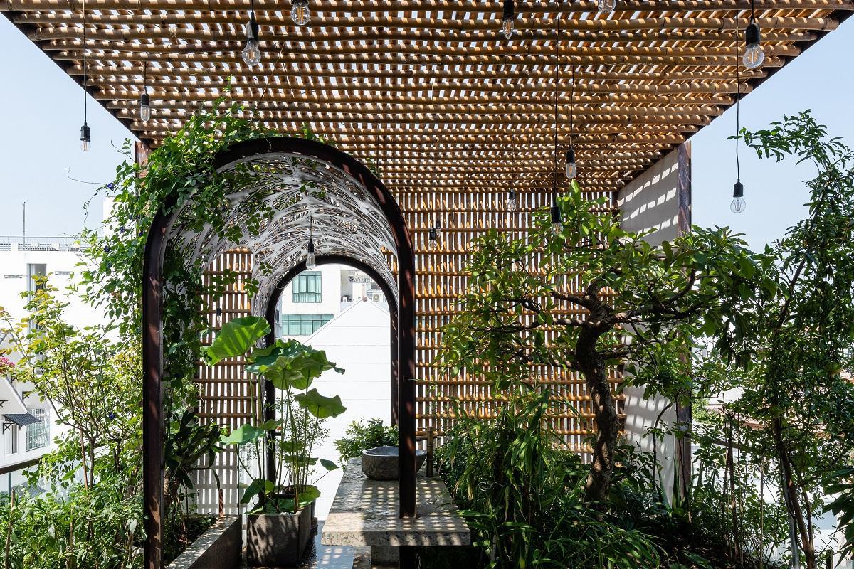 Nhà Tổ Chim - Những khoảng trống và mảng xanh trong nhà phố hẹp | atelier NgNg