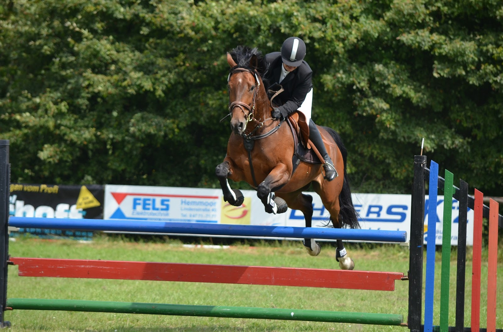 Bay horse jumps colourful jump as rider looks down