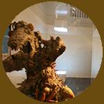 ADLS musée 2.png