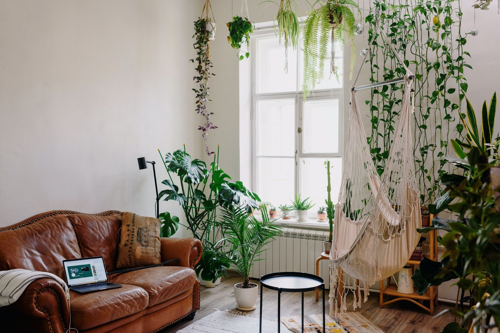Advice To Create A More Eco-Friendly Home