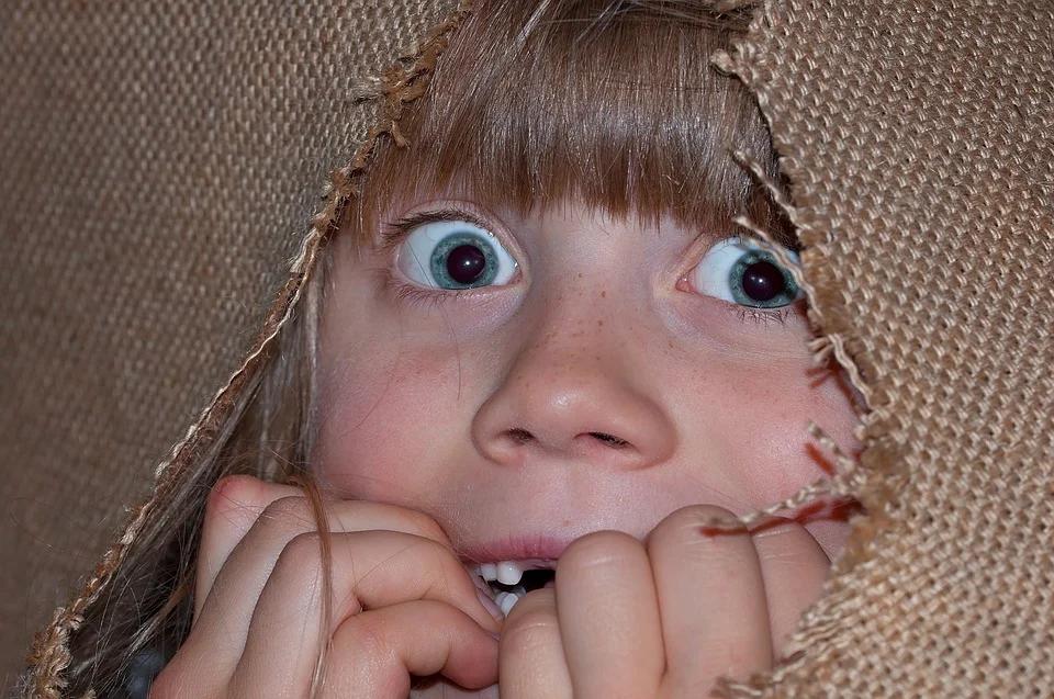 https://pixabay.com/photos/person-human-girl-child-eyes-face-1205140/