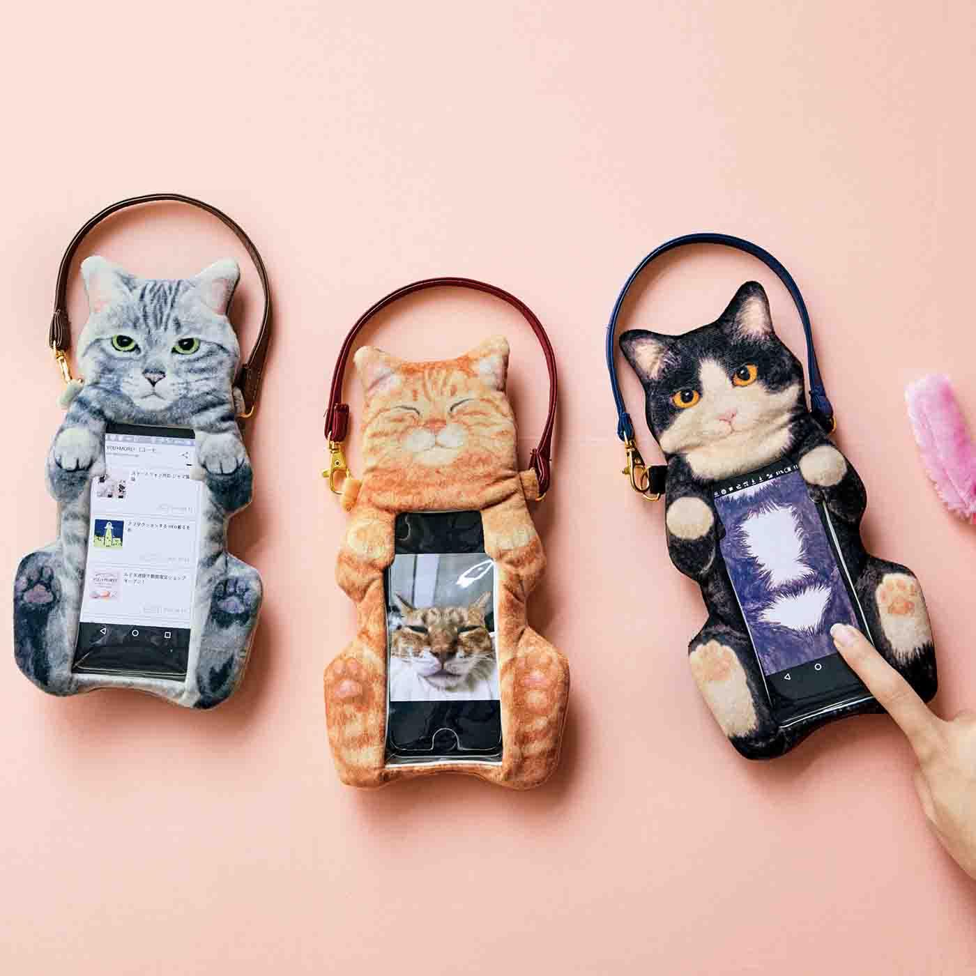 「フェリシモ猫部」は通販だけじゃない。保護活動、譲渡会まで行うって?
