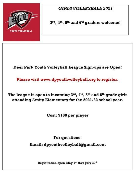 Volleyball Flyer