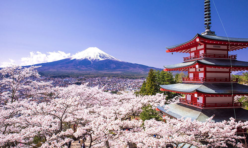 Things to Remember For Your Trip to Japan