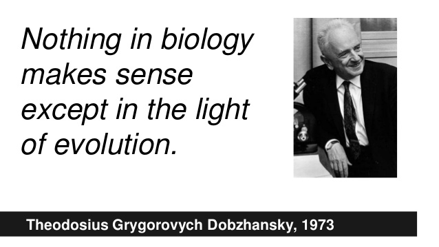 Image result for nothing makes sense except in the light of evolution