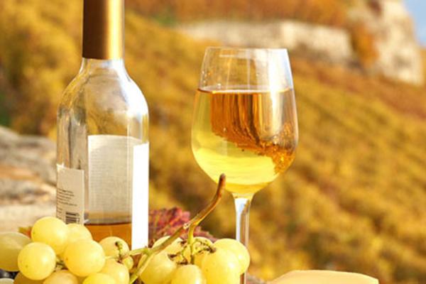 Rượu vang ngọt là gì? Sự khác nhau giữa rượu vang ngọt và vang chát