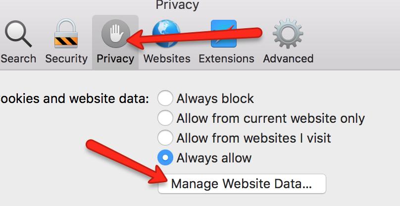 Safari Manage Website Data