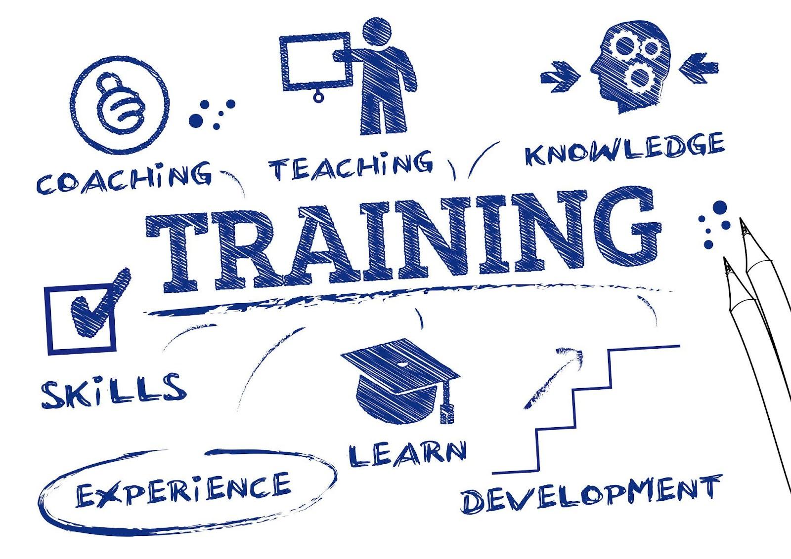 Khám phá quy trình đào tạo nguồn nhân lực trong doanh nghiệp