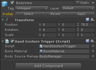BodyViewObjectSettings