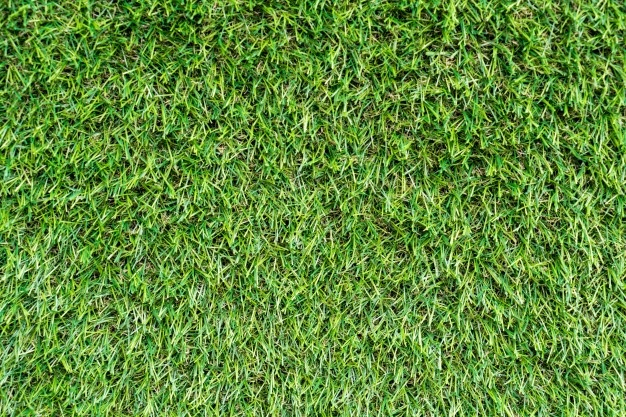 does artificial grass get mould