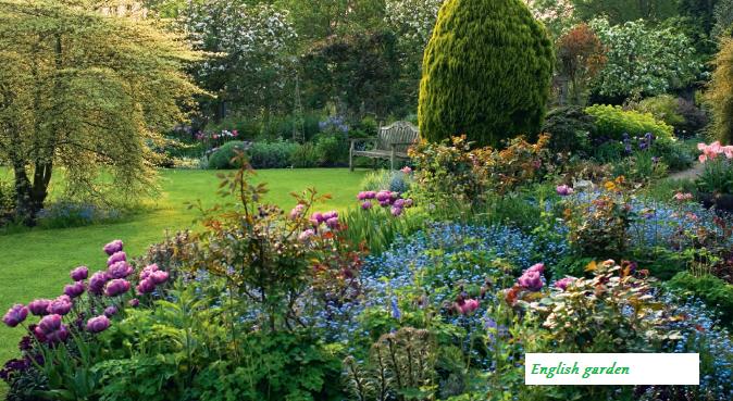 Романтичный миксбордер, английский сад