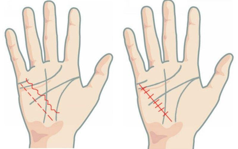 Figure 2: Hướng dẫn xem đường chỉ tay ra ngay sức khỏe