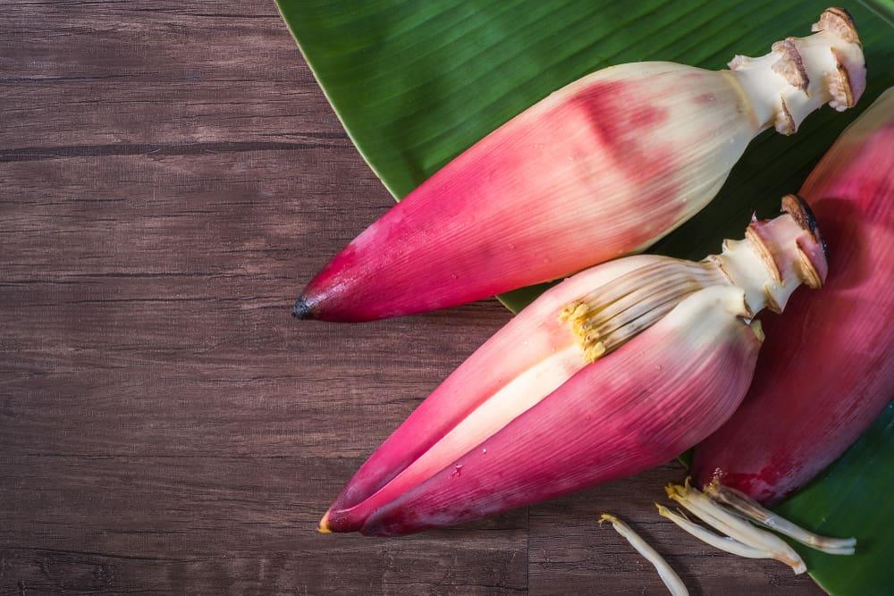 Những công dụng của hoa chuối với sức khỏe - ảnh 1