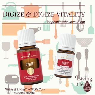 DiGize & DiGize Vitality
