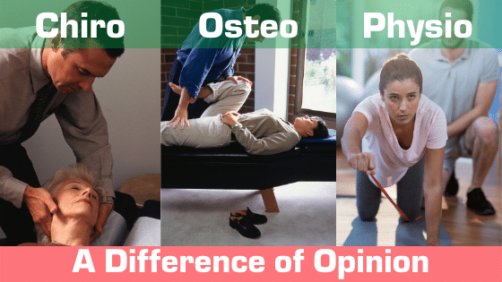 Chiropractic, Osteopathy & Physiotherapy. The three main regulated hands-on Allied health professions that deal with the whole body.