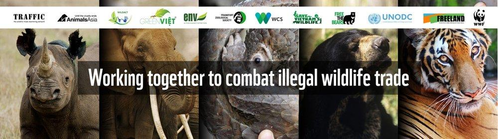 Image result for illegal wildlife crime