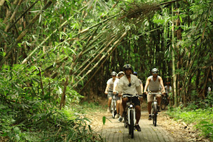 Bali countryside cycling tour - Ubud bike tour - ride in Bamboo Forest