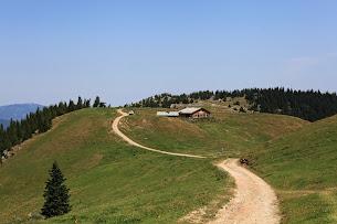Blick zur Almreserlhütte