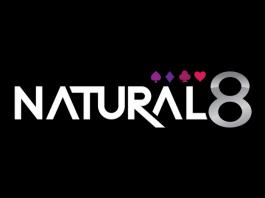 Natural8 лого