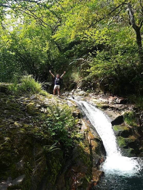 Una cascada en medio de un bosque  Descripción generada automáticamente