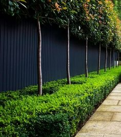 But A Trend Thatu0027s Become Increasingly Popular Takes Americau0027s Favorite  Fencing Material In A Whole New Direction. Thatu0027s Right: Black Wooden Fences  Are Hot ...