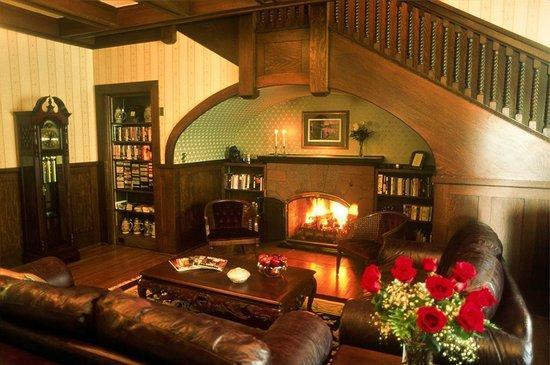 Image result for firelight living room