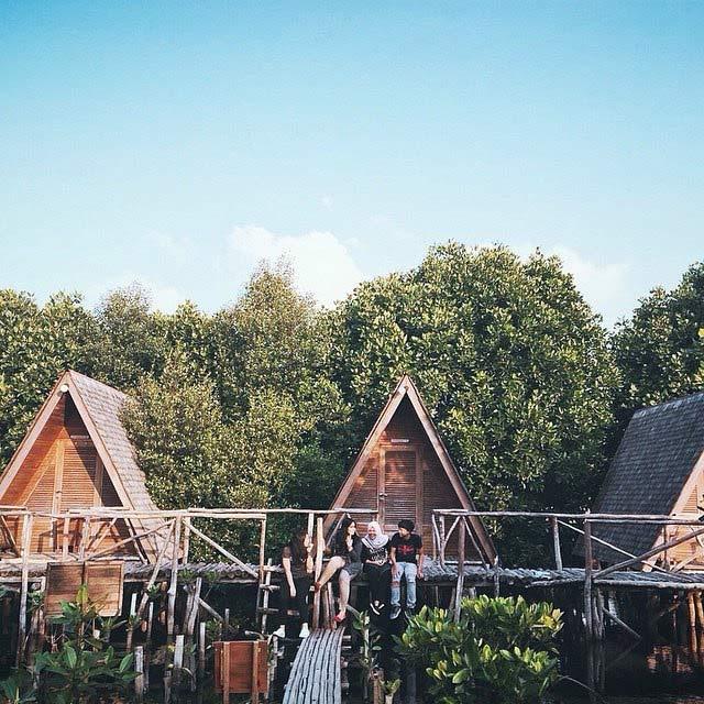 tempat instagramable hutan mangrove pik
