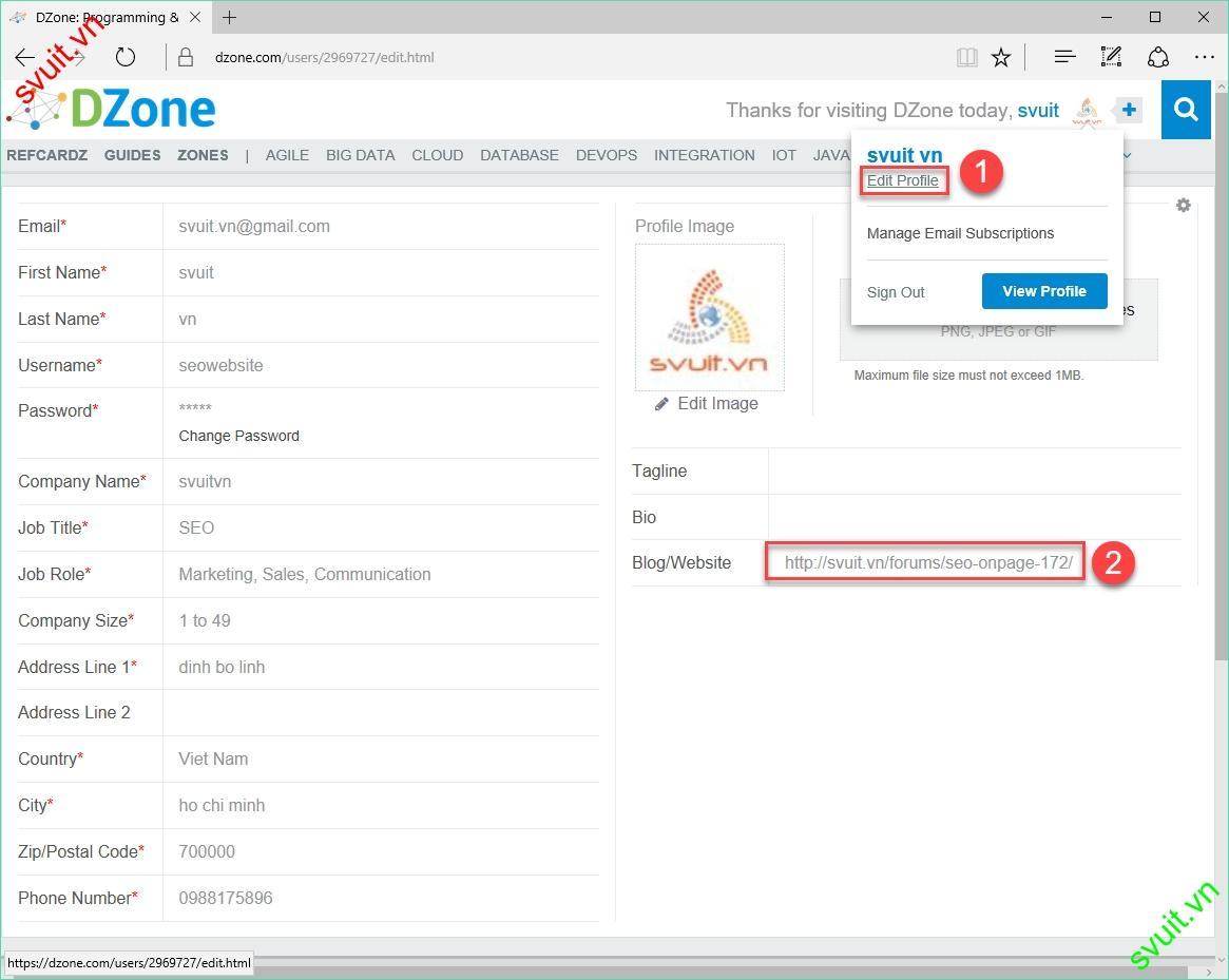Backlink trên dzone.com(7)